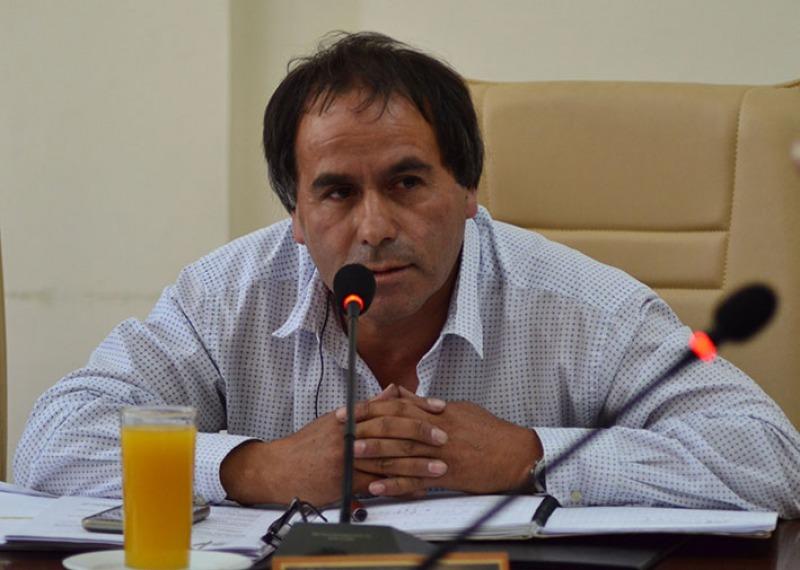 """Sebastián Maturana, concejal: """"Estamos visibilizando al PPD en Curicó"""""""